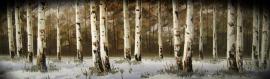 thumbs_jungle-wood-header-9050-1024x300.jpg