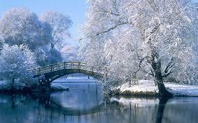 winter bridge.jpg