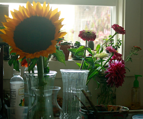 sunflower-in-a-window.jpg