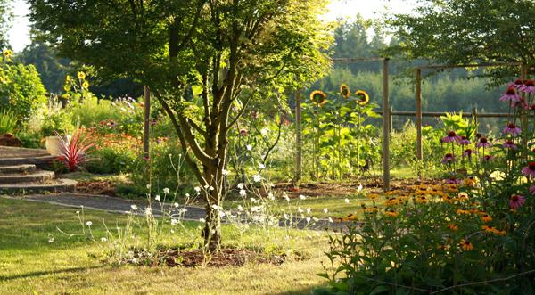 garden-view.jpg