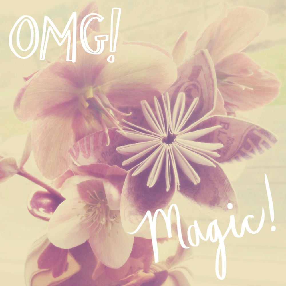 OMG! Magic! Flowers