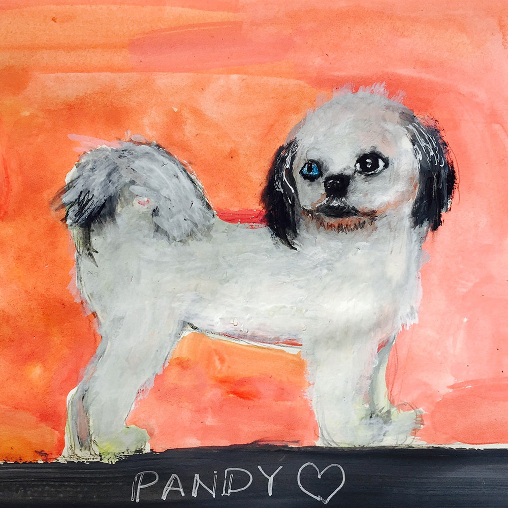 A client's dog, Pandy