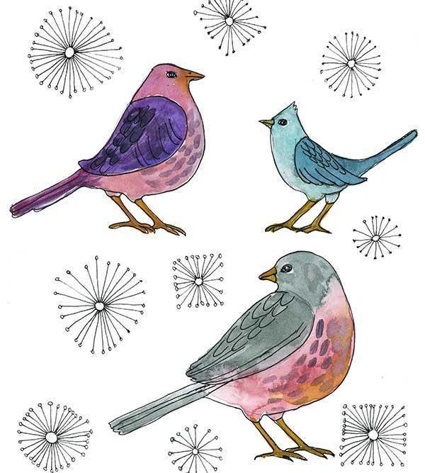 sb-birds-.jpg