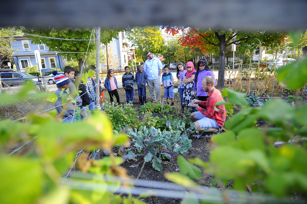 Brad Pillen of CitySprouts (right) gives a lesson to Mr. Scott Macomber's (center) 3rd graders on Tuesday, Oct. 14, 2014 at Morse School in Cambridge. CitySprouts maintain gardens at Cambridge Public Schools. (Wicked Local Staff Photo / Brett Crawford)