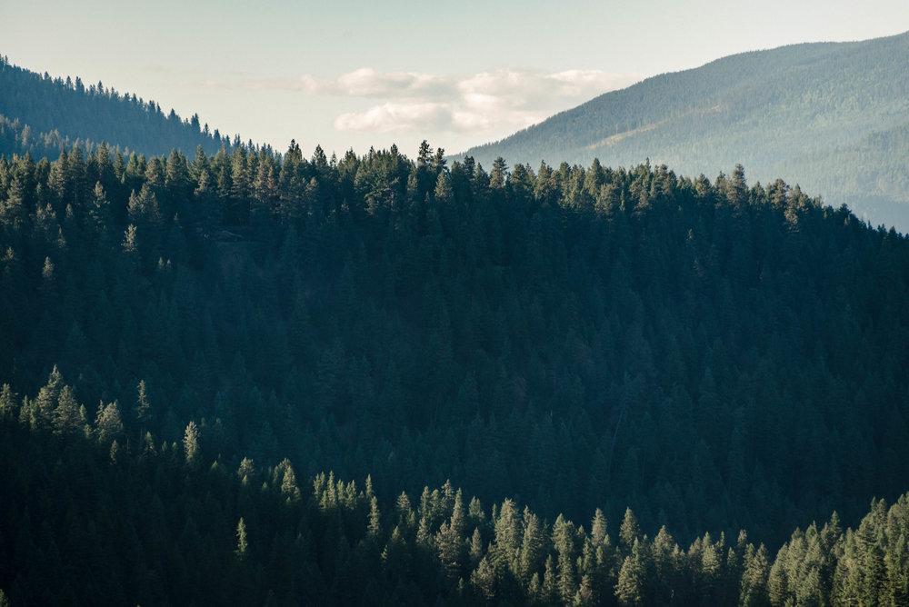 montana-29.jpg