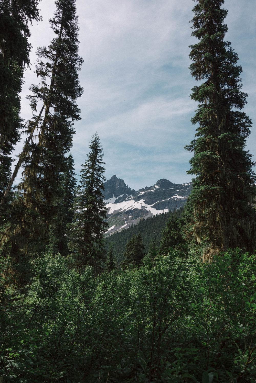 montana-112.jpg