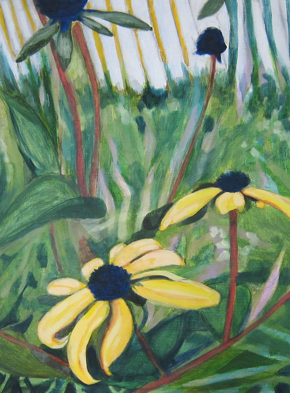 #12 Black-eyed Susans