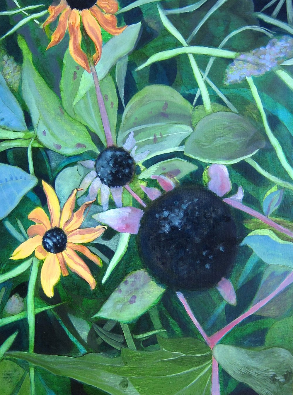 #4 Black-eyed Susans