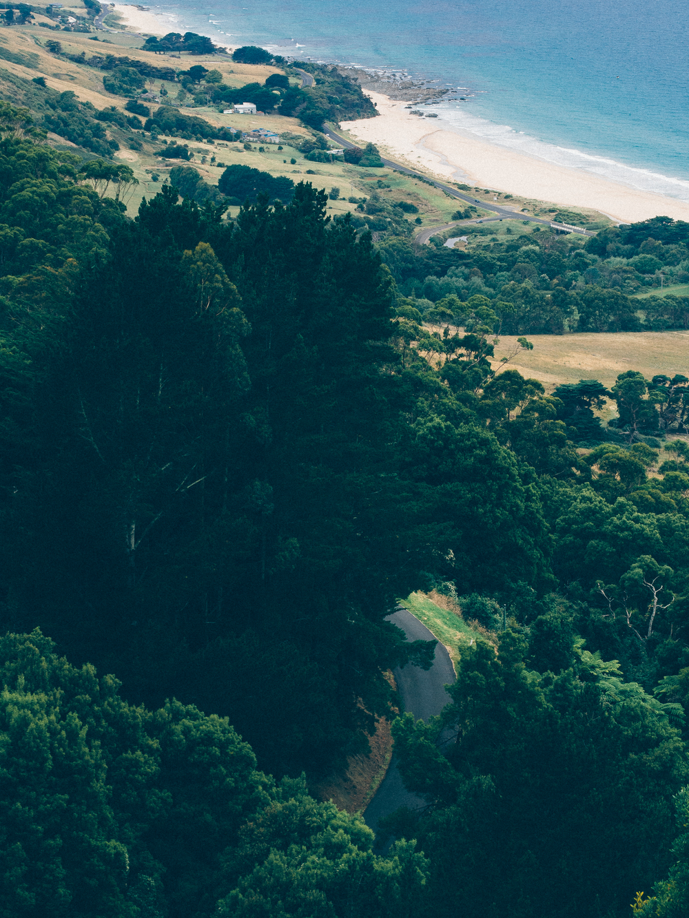 Overlooking the Great Ocean Road from a hill in Apollo Bay.
