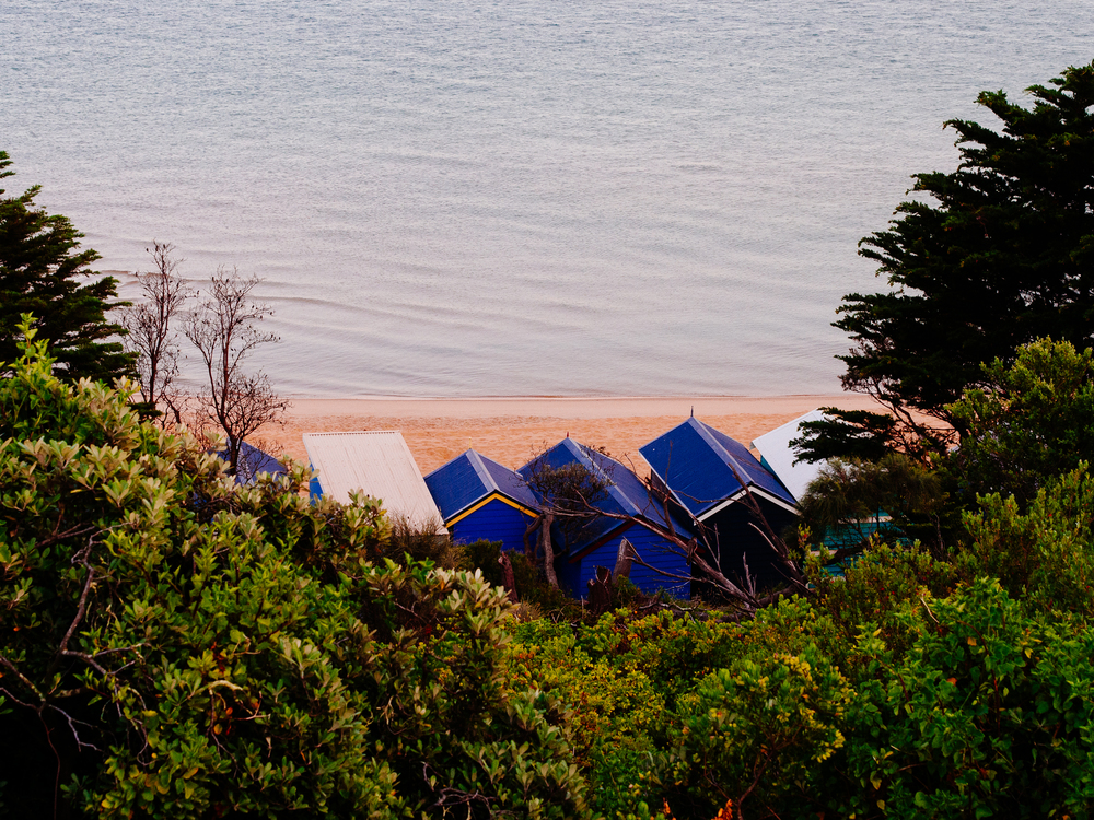 Beachboxes along Mill's beach