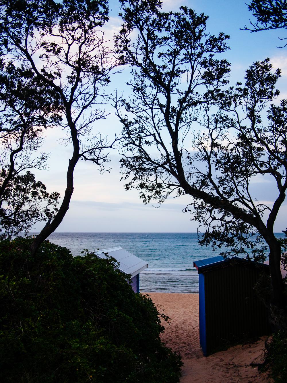 Mills beach