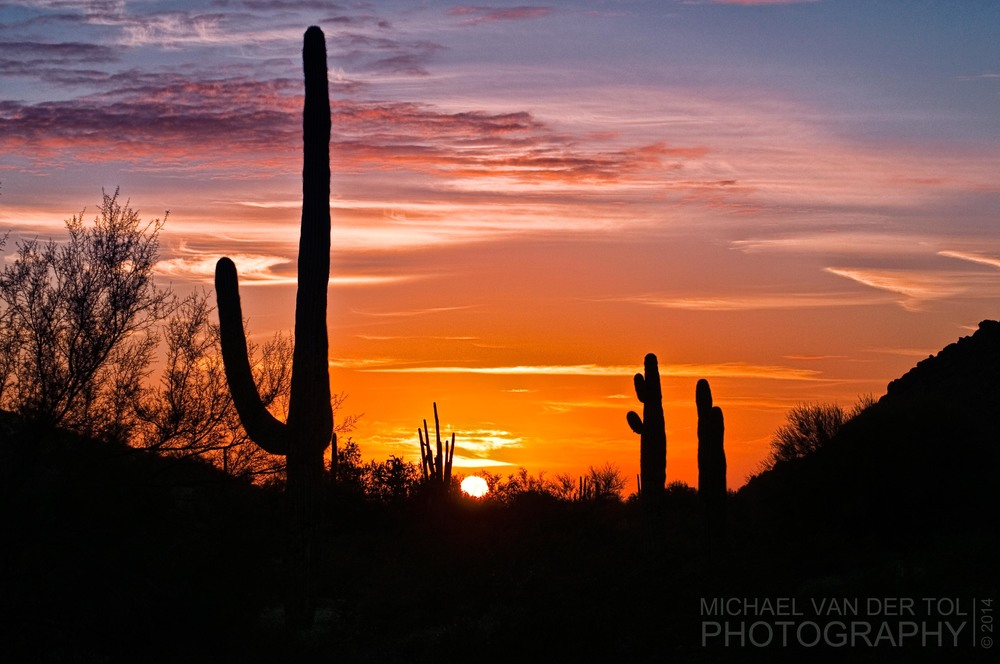 Sonoran Desert near Maricopa, AZ