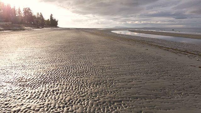 Glad to be back on the beach. It's been a while and it looks like I'm all alone too. . . . . #VancouverIsland #BritishColumbia #Canada #PacificNorthWest #PNW #PNWCollective #ExploreBC #HikingBC #LeftCoast #WetCoast #ExploreMore #TheGreatOutdoors #WildernessCulture #PNWwonderland #TheNWadventure #TravelBC #NorthWestisBest #BestofBC #CanadaTheNorth #ArtofVisual #StayPNW #StayandWander #MyPQB #QualicumBeachVIC #QualicumBeach