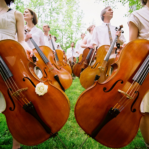 Click here to go to the  Portland Cello Project's website...