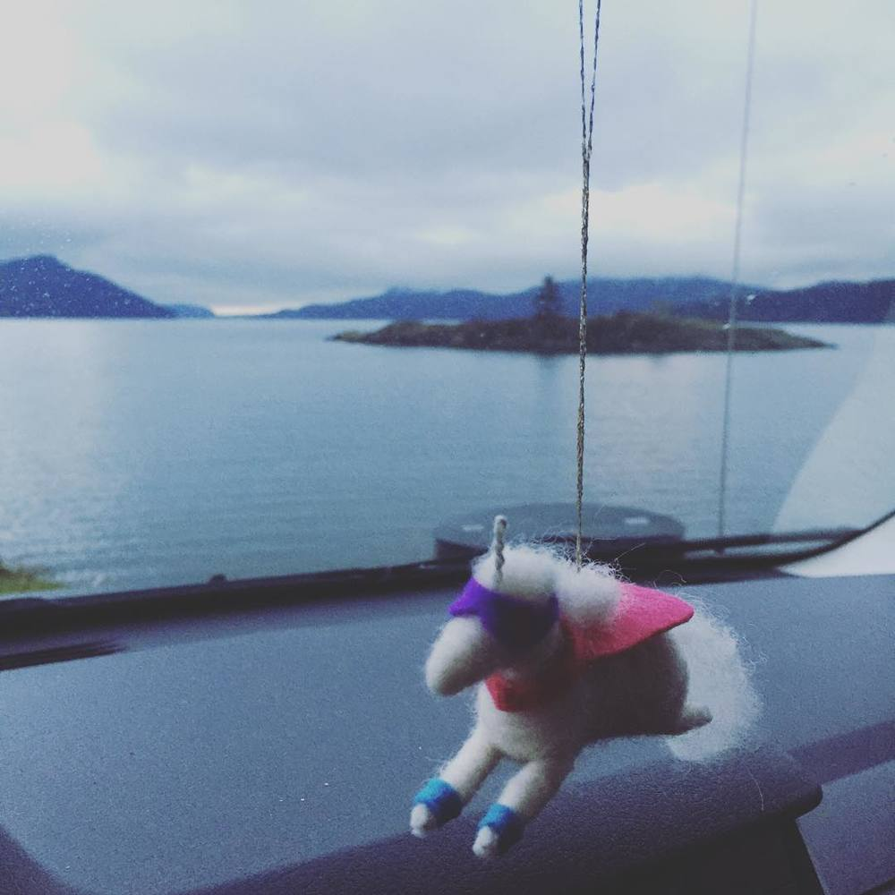 unicorn with a view.jpg
