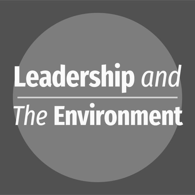 Leadership and the Environment By Joshua Spodek