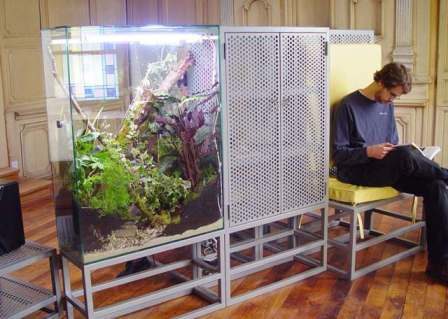"""Terrarium Furniture"""