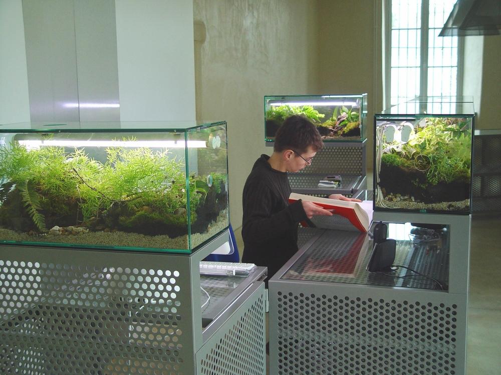 entrance deskw-terrarium.jpg