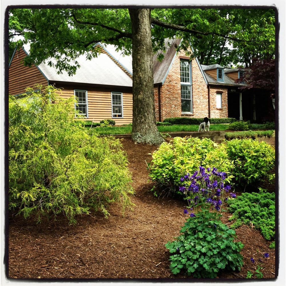 Annandale, Virginia - Spring 2012