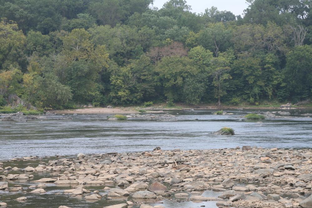 Potomac River, Great Falls Virginia