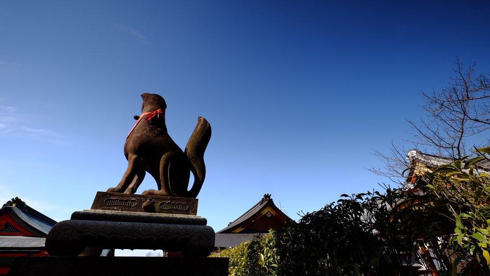 日本神道裡的狐狸是天神的信使,有著高貴重要的身份,這和中國傳統裡的狐狸小姊有著天庸之別。