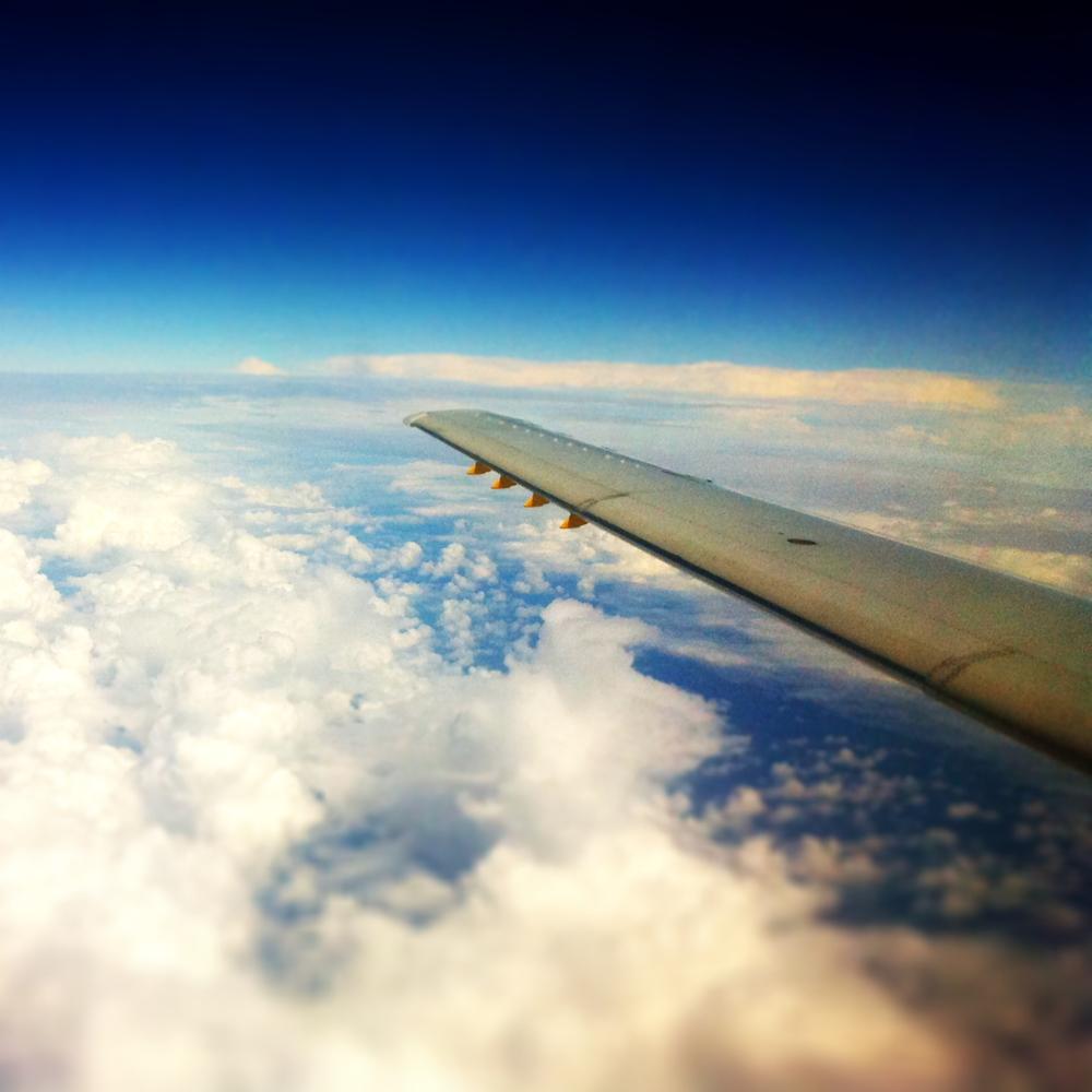 wing - 092011.jpg
