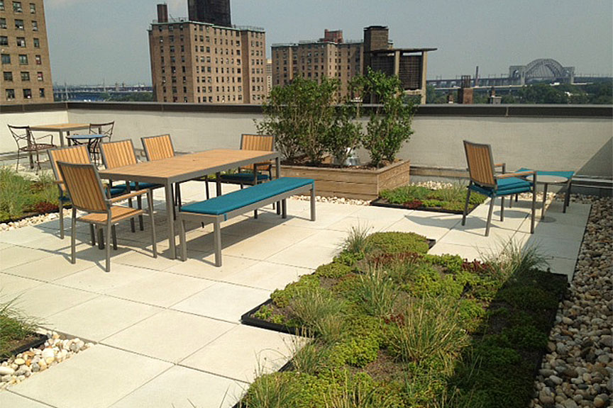 Observatory Place Green Roof East Harlem Manhattan