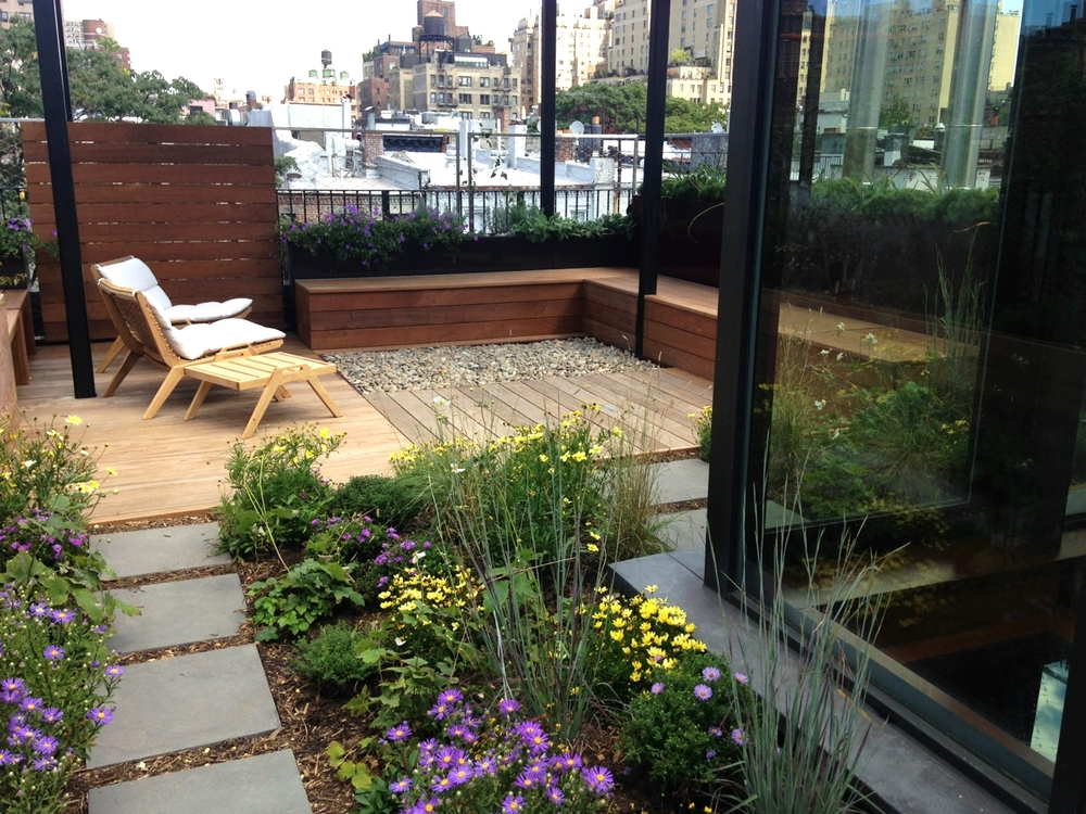 Upper West Side Meadow Roof - installed 2014