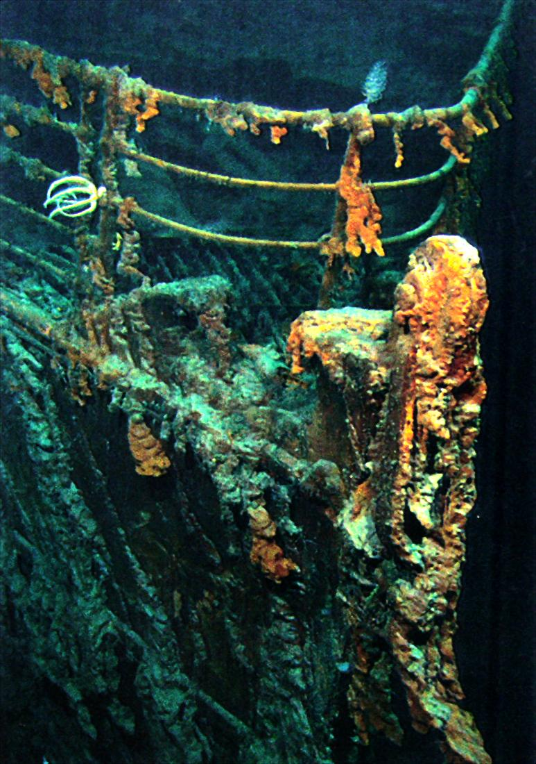 Titanic%27s Bow 2.jpg