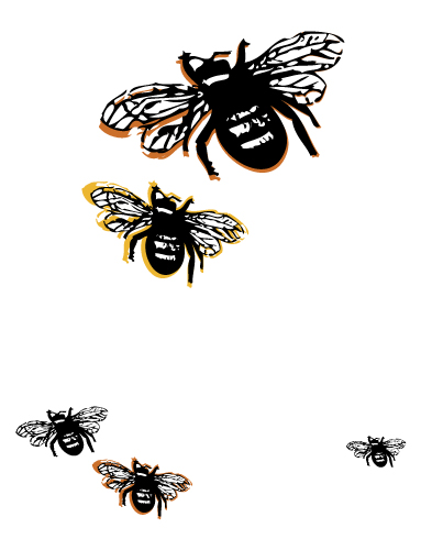 Bees Illustration