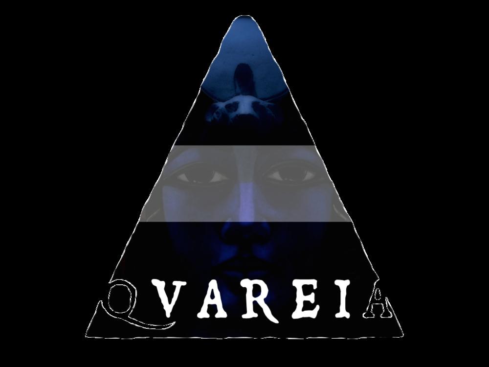 QUAREIA_triangle.png