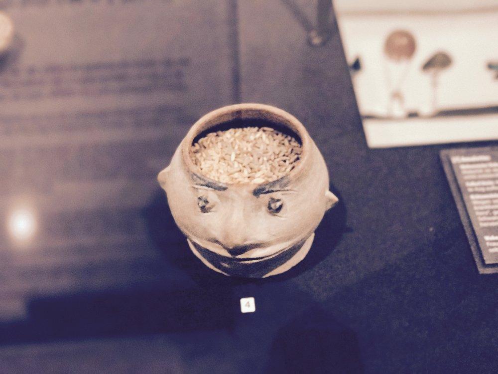 Clay-head Urn