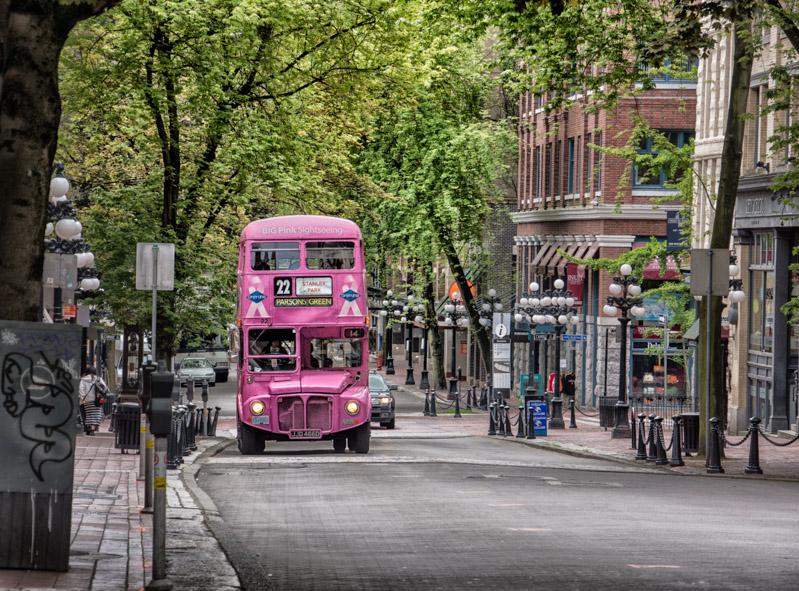 hip on hop off bus