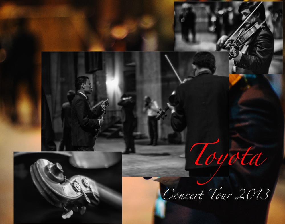 Concert Tour 2013
