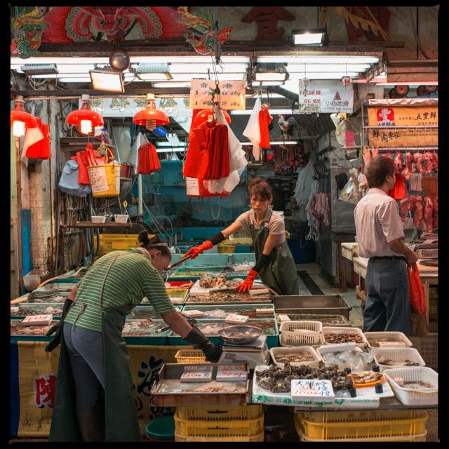 plenty of fresh fish to buy