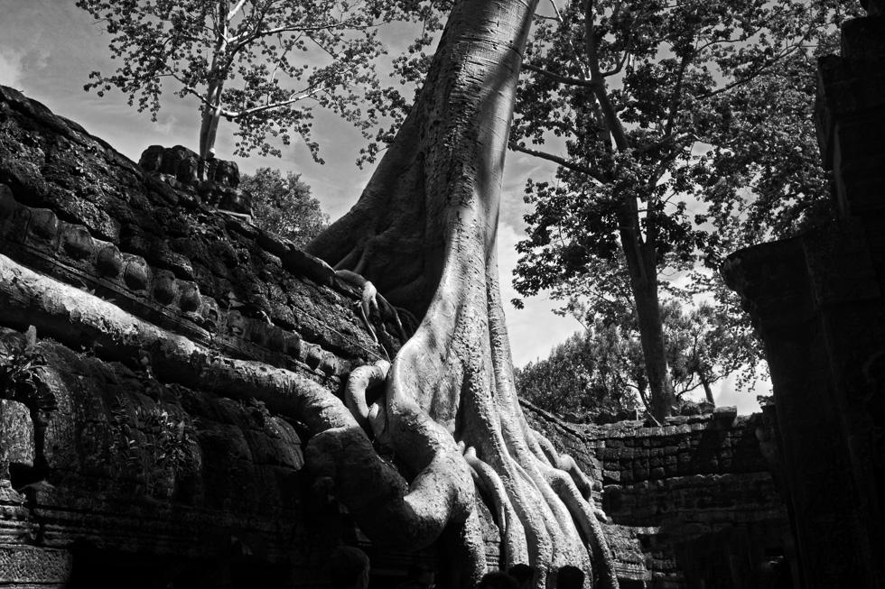 201407121007_DSC5703-Edit-Edit-Cambodia_Angkor_Travel_Siem Reap.jpg