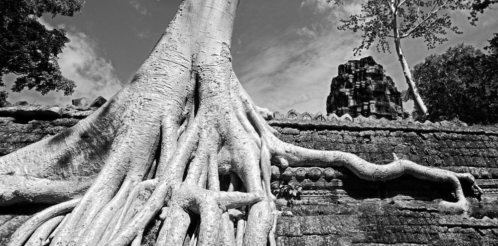 201407120959_DSC5685-Edit-Edit-Cambodia_Angkor_Travel_Siem Reap.jpg