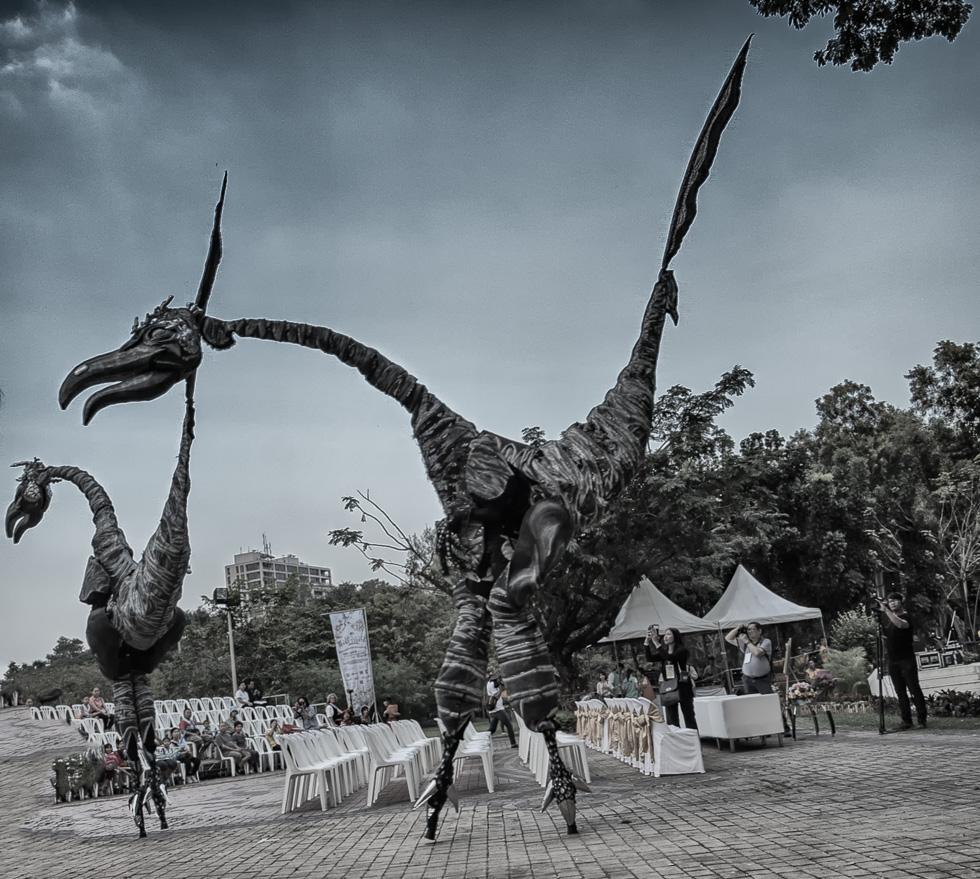 Dinosaur-4.jpg