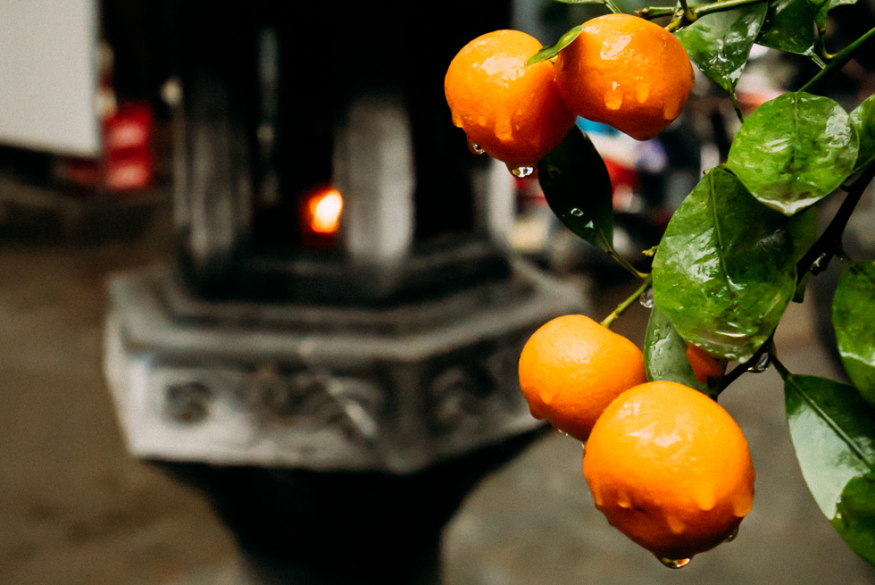 TET, Vietnamese New Year, is not far away and you'll see these fruits everywhere