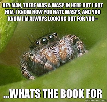 Poor misunderstood spider.