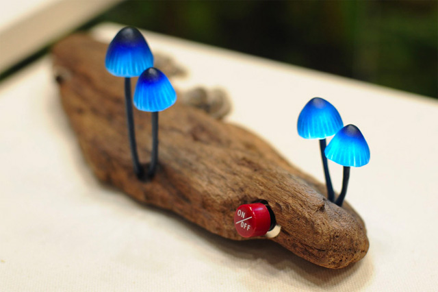 mushroom-9.jpg