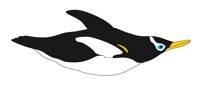 Bouvet Penguin part of our logo.