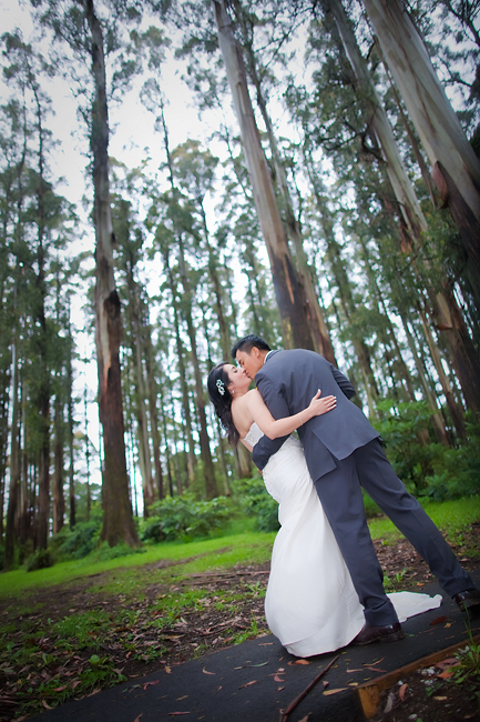Dandenong Ranges Wedding