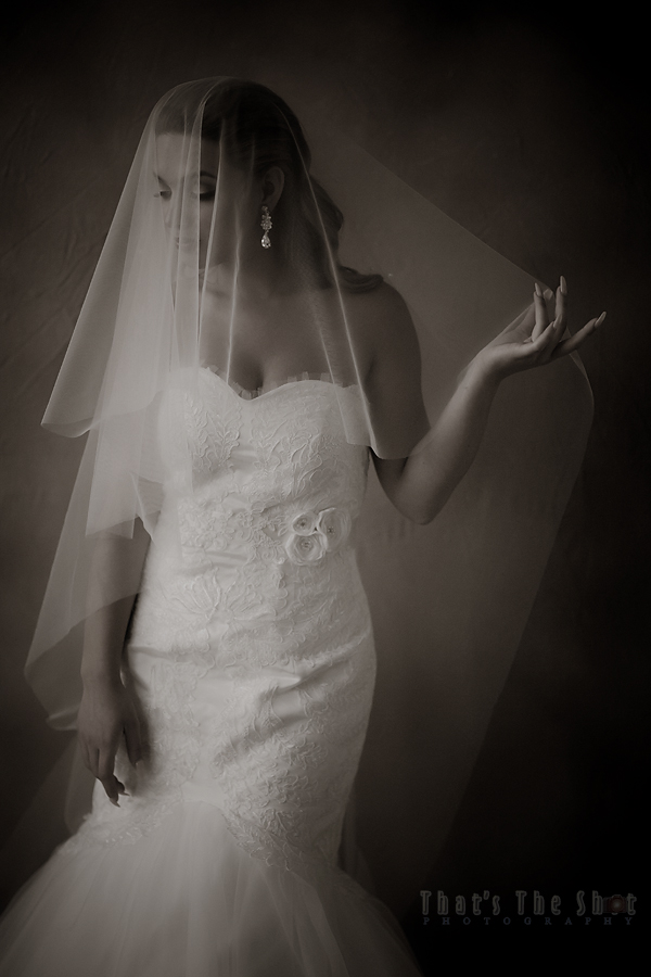 Bridal Model Shoot by Melbourne Wedding Photographer.  Wedding gown