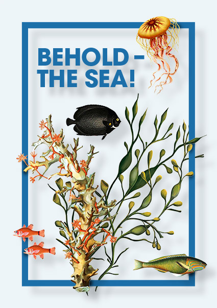Illustration-Behold-The-Sea.jpg