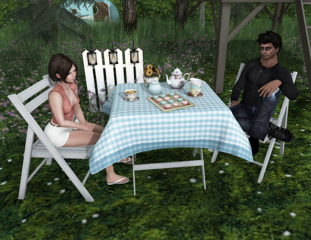 friday home - the garden - april 2.jpg