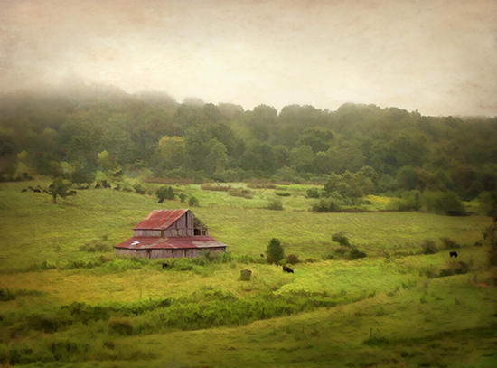 8 25 cooked red barn in country field.jpg