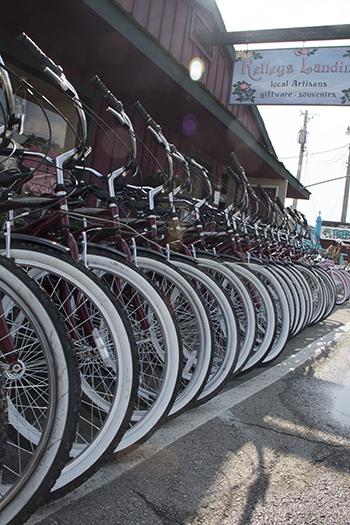 10 10 13 raw bikes on kellys island.jpg