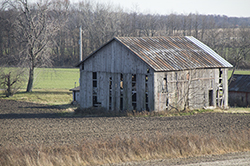 11 22 raw brown authentic barn.jpg