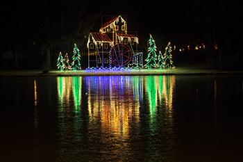 Firestone park light show raw 1 3.jpg